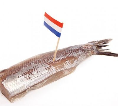 hollandse nieuwe schiedam nolet schmidt ronde tafel
